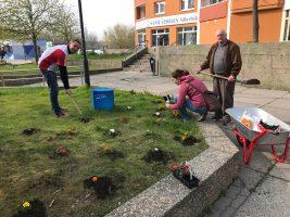 Hauptsache Halle unterstützt Frühjahrsputz der Stadt
